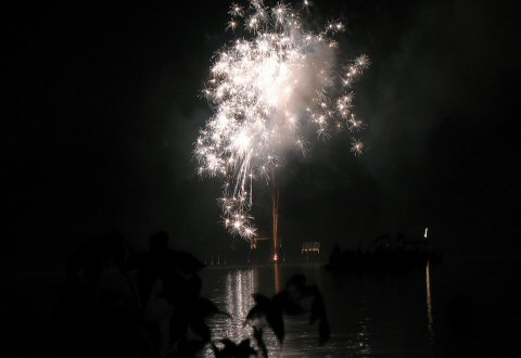 Fireworks from our backyard – by Springwolf © 2008