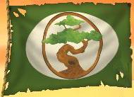 vhawkins-flag